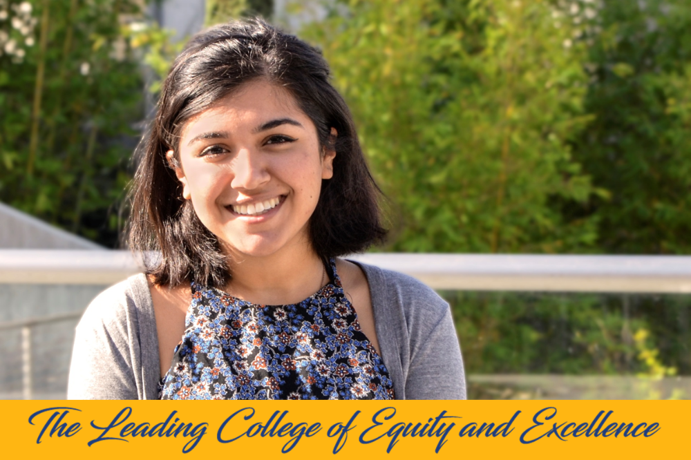AS President, Student Trustee Fakhrabadi Supports Equity as a Student
