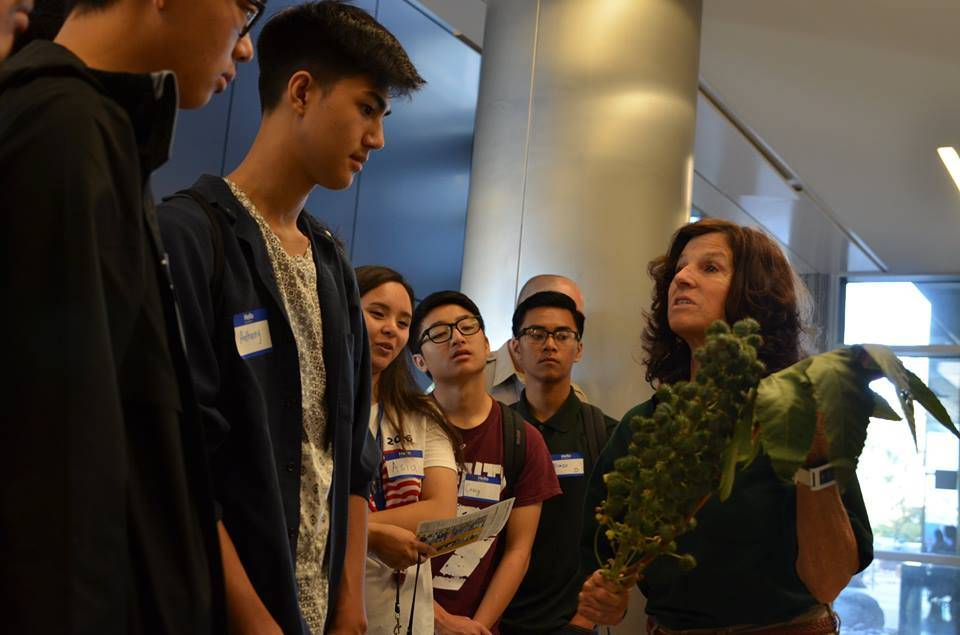 Students participating in the SEEDS Sustainability Summit at San Diego Mesa College participated in a Plantemon Go activity, where they learned about sustainable plants on campus.
